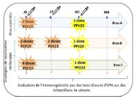 Etude PNEUMOVAS (schéma vaccinal)